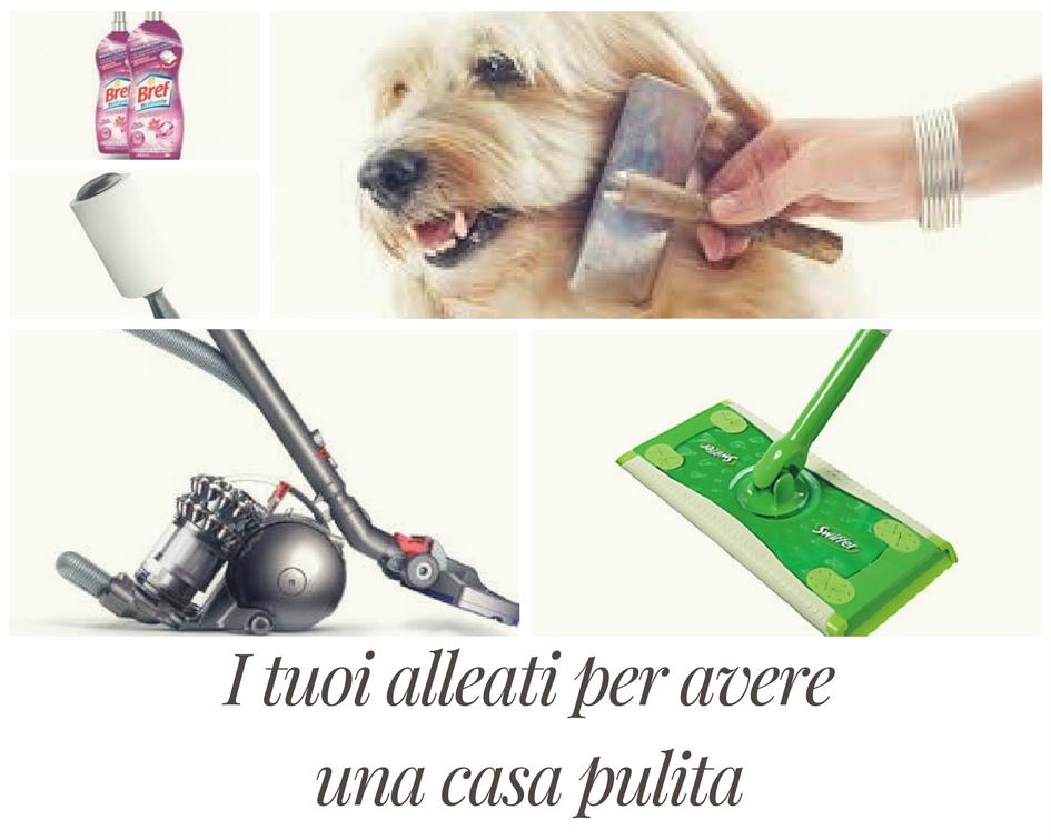 Una casa pulita con animali